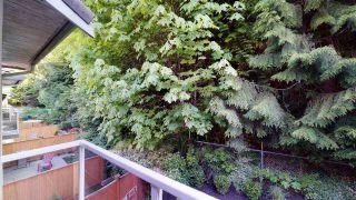 "Photo 28: 21 2401 MAMQUAM Road in Squamish: Garibaldi Highlands Townhouse for sale in ""Highland Glen"" : MLS®# R2581121"