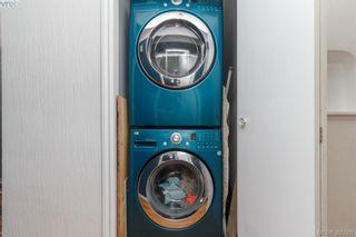 Photo 18: 3855 Seaton St in VICTORIA: SW Tillicum House for sale (Saanich West)  : MLS®# 793138