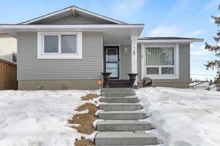 Main Photo: 111 Castleridge Road NE in Calgary: Castleridge Detached for sale : MLS®# A1052157