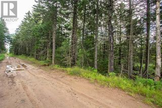 Photo 7: Lots Brooklyn RD in Midgic: Vacant Land for sale : MLS®# M136510