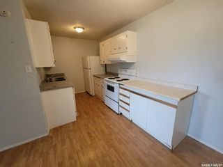 Photo 3: 205 529 X Avenue South in Saskatoon: Meadowgreen Residential for sale : MLS®# SK855704