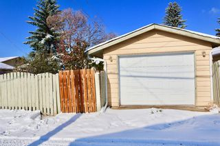 Photo 15: 153 Margate Close NE in Calgary: Marlborough Detached for sale : MLS®# A1044736