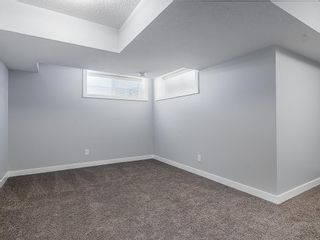 Photo 22: 166 SKYVIEW Circle NE in Calgary: Skyview Ranch Row/Townhouse for sale : MLS®# C4277691
