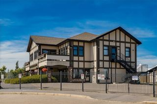 Photo 34: 101 NEW BRIGHTON Circle SE in Calgary: New Brighton Detached for sale : MLS®# C4264678