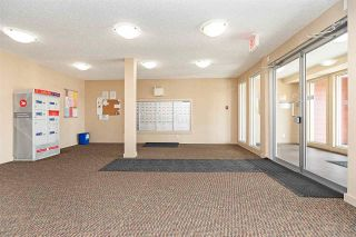 Photo 9: 306 5810 MULLEN Place in Edmonton: Zone 14 Condo for sale : MLS®# E4241982