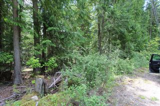 Photo 1: Lot 96 Crowfoot Drive in Anglemont: North Shuswap Land Only for sale (Shuswap)  : MLS®# 10158355