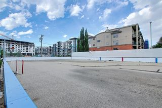 Photo 43: 303 495 78 Avenue SW in Calgary: Kingsland Apartment for sale : MLS®# A1120349