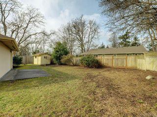 Photo 20: 4121 Mercer Pl in VICTORIA: SE Mt Doug House for sale (Saanich East)  : MLS®# 779972