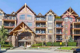 Photo 1: 270 8328 207A Street: Condo for sale in Langley: MLS®# R2551544