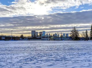 Photo 33: 432 18 Avenue NE in Calgary: Winston Heights/Mountview Detached for sale : MLS®# C4279121