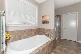 Photo 24: 740 HARDY Point in Edmonton: Zone 58 House for sale : MLS®# E4245565