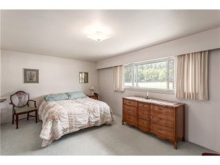 Photo 13: 1246 Kings Av in West Vancouver: Ambleside House for sale : MLS®# V1129618