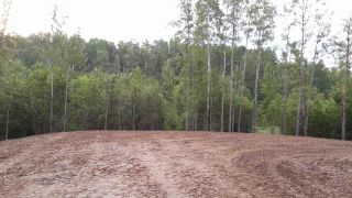 Photo 8: TWP RD 633 A Rge Rd 261A: Rural Westlock County Rural Land/Vacant Lot for sale : MLS®# E3283338