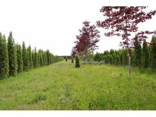 """Photo 6: 7200 216TH Street in Langley: Willoughby Heights Land for sale in """"Milner"""" : MLS®# F1411651"""