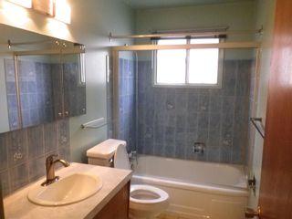 Photo 13: 14436 62 Street in Edmonton: Zone 02 House for sale : MLS®# E4255493