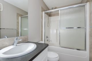 Photo 30: 17567 59 Street in Edmonton: Zone 03 House for sale : MLS®# E4259556