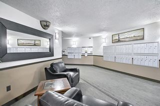 Photo 23: 110 11 DOVER Point SE in Calgary: Dover Apartment for sale : MLS®# A1118273