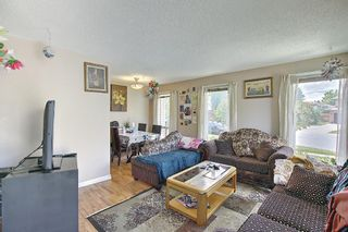 Photo 4: 217 Templemont Drive NE in Calgary: Temple Semi Detached for sale : MLS®# A1120693