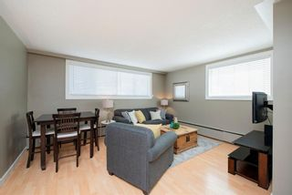 Photo 8: 7 316 22 Avenue SW in Calgary: Mission Apartment for sale : MLS®# A1115911