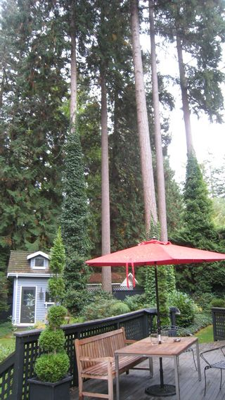 Photo 18: 2936 138TH Street in South Surrey White Rock: Elgin Chantrell Home for sale ()  : MLS®# F2923363