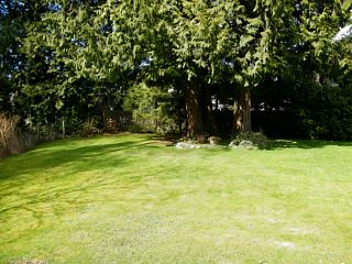 Photo 15: 6505 138TH Street in Surrey: East Newton House for sale : MLS®# F1416683