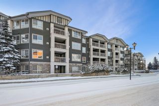 Photo 19: 111 35 Richard Court SW in Calgary: Lincoln Park Apartment for sale : MLS®# A1068844