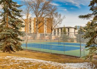 Photo 36: 2401 17 Street SW in Calgary: Bankview Row/Townhouse for sale : MLS®# A1087305