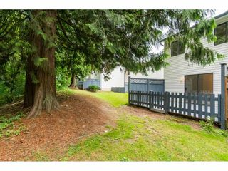 "Photo 19: 176 13738 67 Avenue in Surrey: East Newton Townhouse for sale in ""HYLAND CREEK"" : MLS®# R2290922"