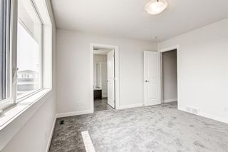 Photo 31: 216 Red Sky Terrace NE in Calgary: Redstone Detached for sale : MLS®# A1125516