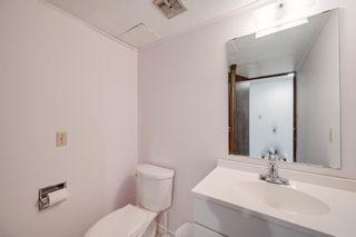 Photo 33: 10916 36A Avenue in Edmonton: Zone 16 House for sale : MLS®# E4246893