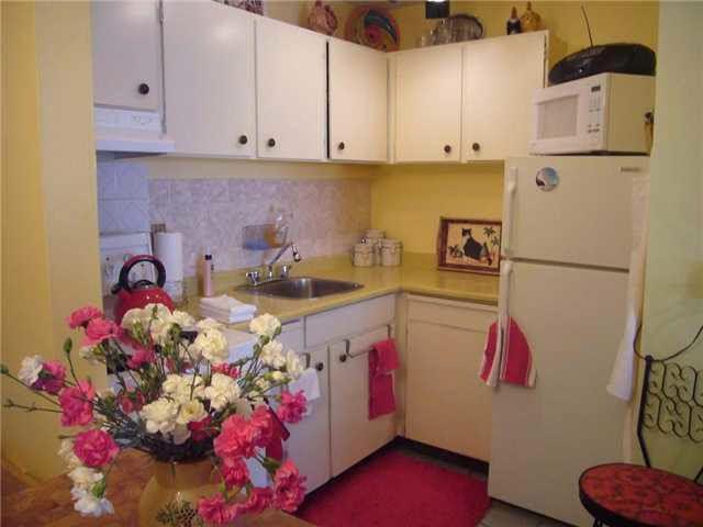 Main Photo: 204 350 E 5TH AVENUE in : Mount Pleasant VE Condo for sale : MLS®# V825937