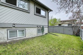 Photo 35: 49 12 Templewood Drive NE in Calgary: Temple Row/Townhouse for sale : MLS®# C4299149