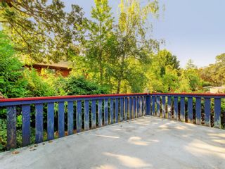 Photo 21: 4166 Tuxedo Dr in : SE Lake Hill House for sale (Saanich East)  : MLS®# 858926