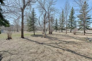 Photo 31: 116 Pine Creek Road: Rural Foothills County Detached for sale : MLS®# A1091741