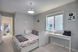 Photo 38: 138 Nolanshire Crescent NW in Calgary: Nolan Hill Detached for sale : MLS®# A1100424