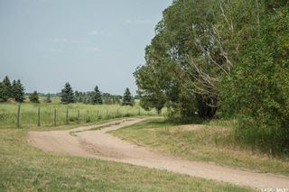 Photo 42: Arens Acreage - Melness Road in Corman Park: Residential for sale (Corman Park Rm No. 344)  : MLS®# SK869761