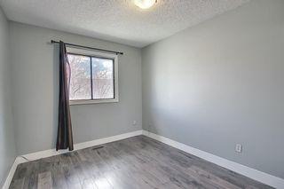 Photo 19: 455 Falconridge Crescent NE in Calgary: Falconridge Detached for sale : MLS®# A1103477