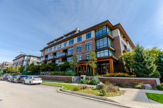 Photo 21: 413 262 SALTER Street in New Westminster: Queensborough Condo for sale : MLS®# R2619610