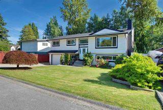 Photo 36: 11186 LARSON Road in Delta: Nordel House for sale (N. Delta)  : MLS®# R2475884