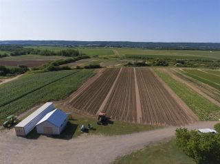 Photo 11: 2969 Highway 1 in Aylesford East: 404-Kings County Farm for sale (Annapolis Valley)  : MLS®# 201919454