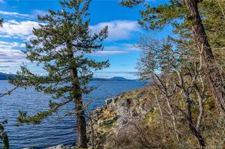 Photo 6: 8100 McPhail Rd in Central Saanich: CS Inlet Land for sale : MLS®# 838233