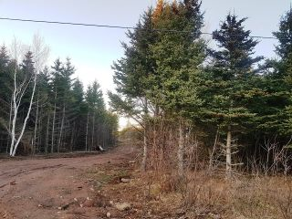 Photo 1: LOT MCNALLY Road in Victoria Harbour: 404-Kings County Vacant Land for sale (Annapolis Valley)  : MLS®# 201923444