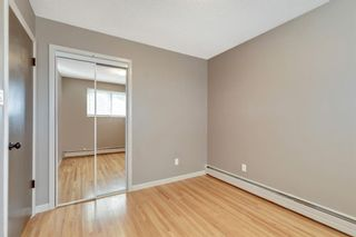 Photo 11: 2815 11 Avenue SE in Calgary: Albert Park/Radisson Heights Detached for sale : MLS®# A1149863