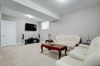 Photo 30: 8233 SADDLEBROOK Drive NE in Calgary: Saddle Ridge Detached for sale : MLS®# A1082147