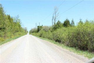 Photo 5: Pt Lt 1 Concession 13 Road in Brock: Rural Brock Property for sale : MLS®# N3143558