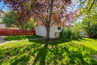 Photo 43: 509 ALEXANDER Crescent NW in Calgary: Rosedale Detached for sale : MLS®# A1091236