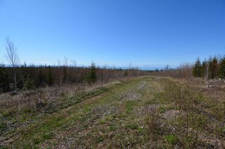 Photo 14: LOT Culloden Road in Culloden: 401-Digby County Residential for sale (Annapolis Valley)  : MLS®# 202111278