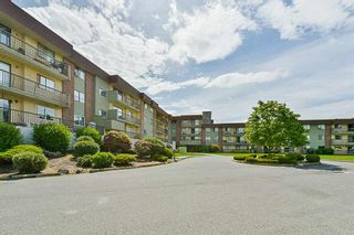 Photo 3: 322 45598 McIntosh Drive in Chilliwack: Chilliwack W Young-Well Condo for sale : MLS®# R2273089