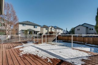 Photo 30: 125 Coventry Crescent NE in Calgary: Coventry Hills Detached for sale : MLS®# A1042180