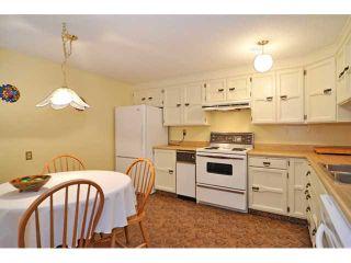 Photo 4: Lakeview-429 3131 63 Avenue SW-CALGARY-